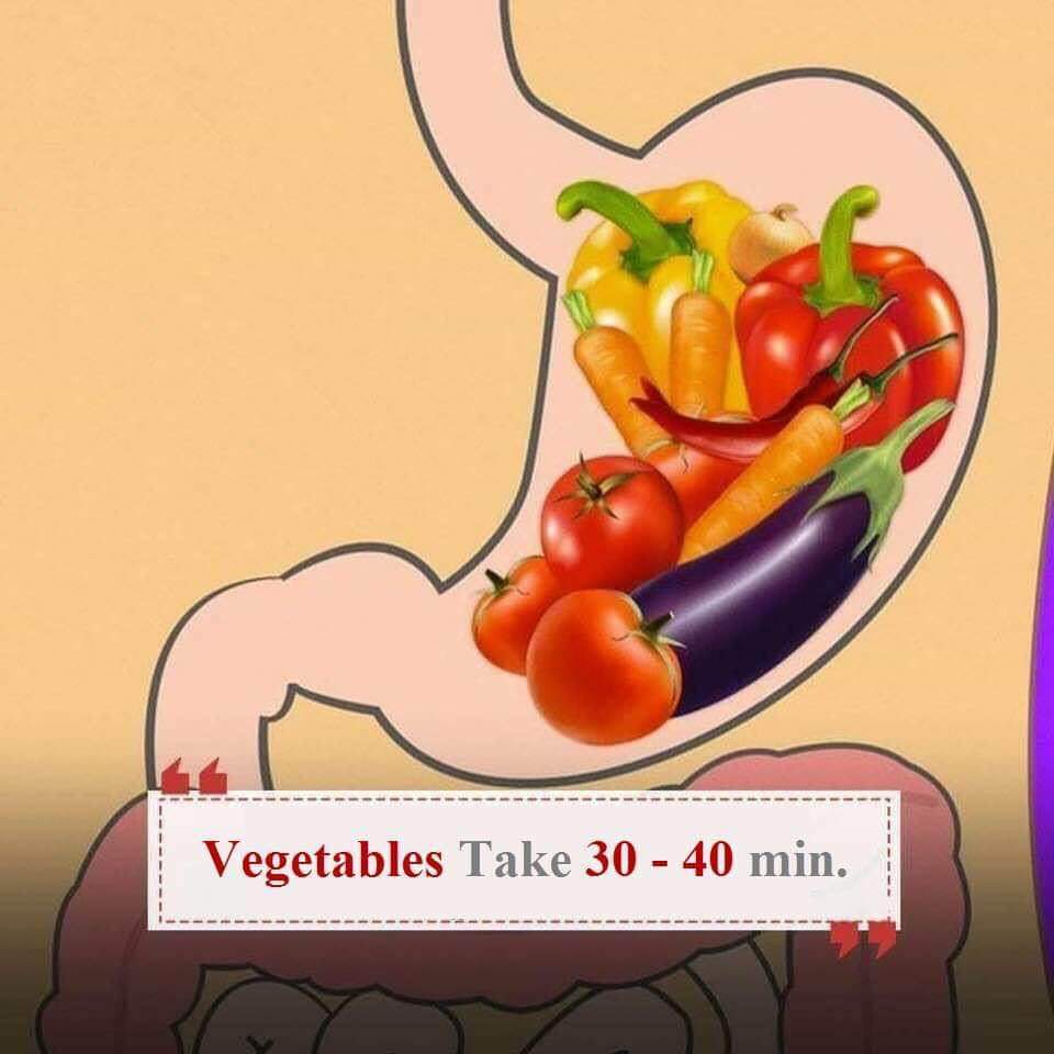 Verdure sullo stomaco